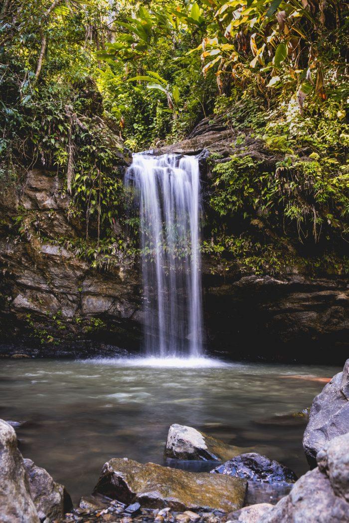 Jungle Waterfall in Puerto Rico