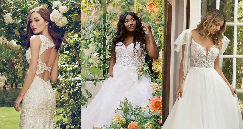 Top Pinned Budget Friendly Wedding Dresses Collage by Rebecca Ingram