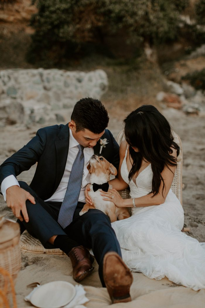 Bride and Groom at Casual Beach Minimony Holding Their Little Dog